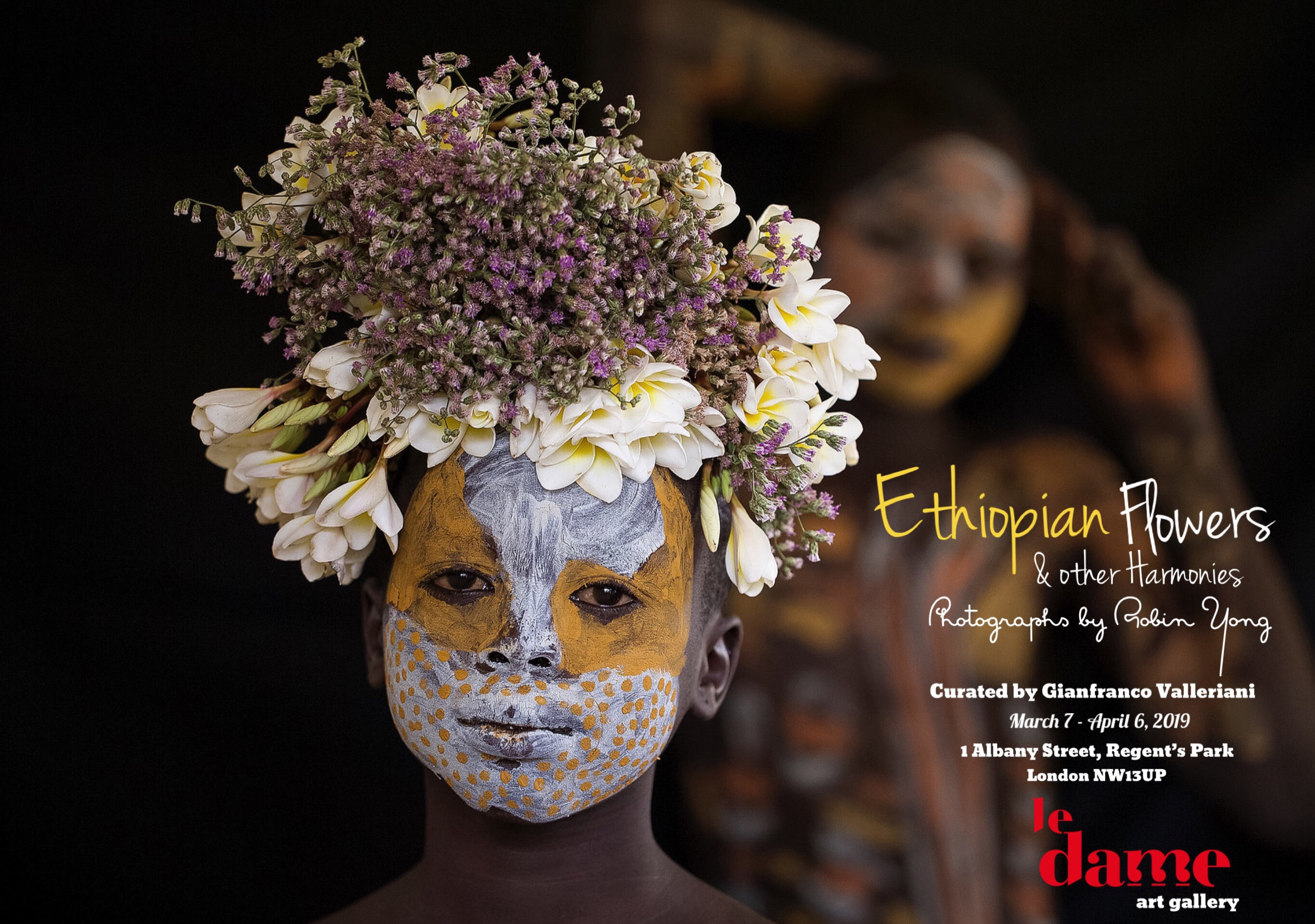 Flowers of Ethiopia by Robin Yong at Le Dame Art Gallery