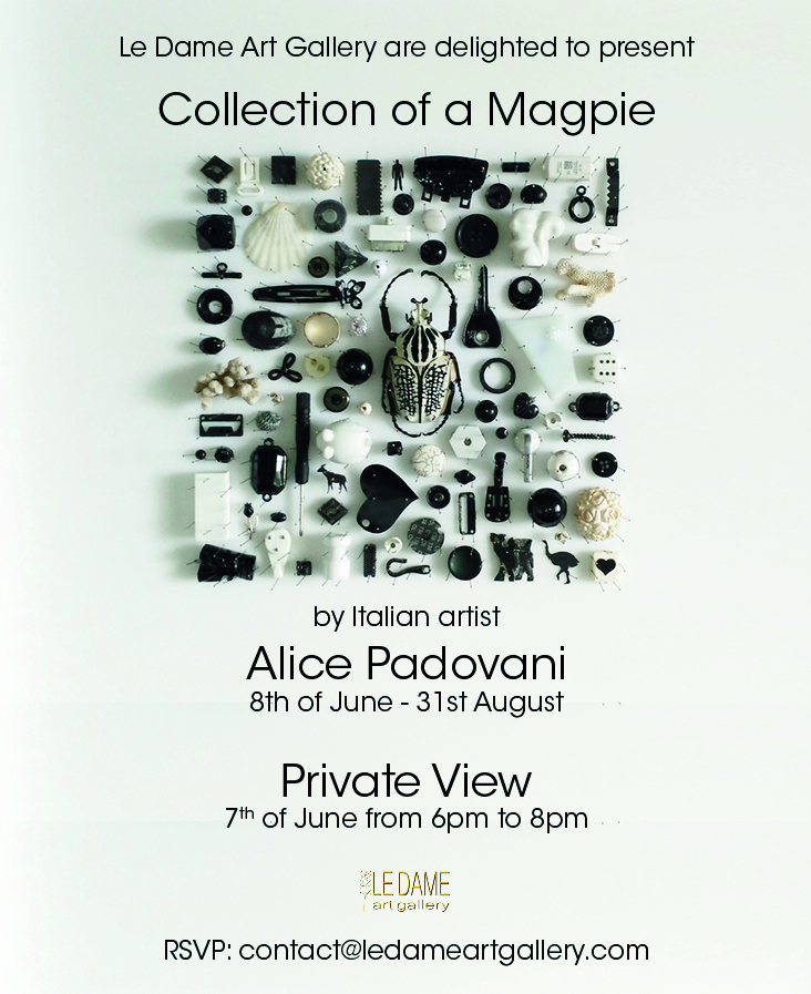 """Collection of a Magpie"" by Alice Padovani"