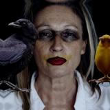 Karen Piddington's picture