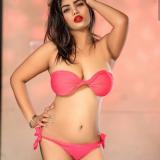 escortagencyjaipur's picture