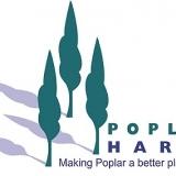 poplarharca's picture