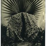 LuciaPizzani's picture