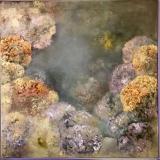 Oil on canvas 100x100cm linen canvas