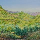 Valley Catalunya Annette Ross