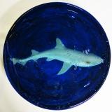 I am a Dogfish but also 'Shark & Chips' (2018) by Miyuki Kasahara