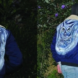 Owl, hand painted on jacket.