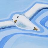 Magic fly by Alex White
